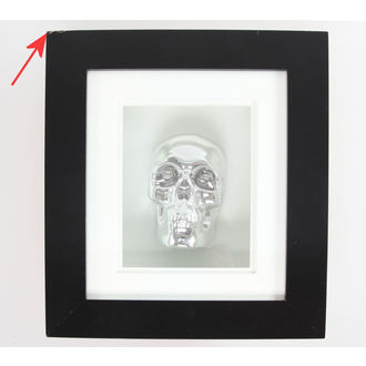 tableau Silver Skull In Cadre - ENDOMMAGÉ